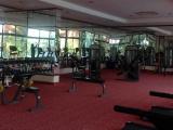 Selge Fitness - gratis_800x600